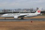 キイロイトリ1005fさんが、伊丹空港で撮影した日本航空 777-289の航空フォト(写真)
