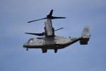 kumagorouさんが、霞目駐屯地で撮影したアメリカ海兵隊 MV-22Bの航空フォト(写真)