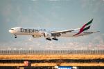 we love kixさんが、関西国際空港で撮影したエミレーツ航空 777-36N/ERの航空フォト(写真)