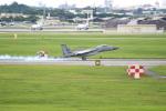 OMAさんが、嘉手納飛行場で撮影したアメリカ空軍 F-15C-39-MC Eagleの航空フォト(写真)
