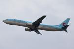 こだしさんが、成田国際空港で撮影した大韓航空 737-9B5の航空フォト(写真)