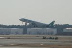 eagletさんが、成田国際空港で撮影したエアソウル A321-231の航空フォト(写真)