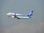 おっつんさんが、羽田空港で撮影した全日空 737-781の航空フォト(写真)