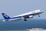 yabyanさんが、中部国際空港で撮影した全日空 A320-211の航空フォト(飛行機 写真・画像)