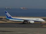 さゆりんごさんが、羽田空港で撮影した全日空 787-8 Dreamlinerの航空フォト(写真)