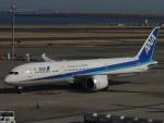 さゆりんごさんが、羽田空港で撮影した全日空 787-9の航空フォト(写真)