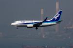 xingyeさんが、香港国際空港で撮影した全日空 737-781の航空フォト(写真)