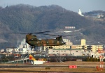 LOTUSさんが、八尾空港で撮影した陸上自衛隊 CH-47Jの航空フォト(写真)