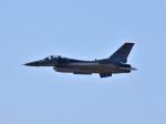 れんしさんが、芦屋基地で撮影したアメリカ空軍 F-16CM-50-CF Fighting Falconの航空フォト(写真)