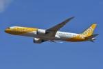 よしポンさんが、成田国際空港で撮影したスクート 787-9の航空フォト(写真)