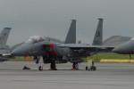 banshee02さんが、横田基地で撮影したアメリカ空軍 F-15E-63-MC Strike Eagleの航空フォト(写真)