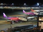 OMAさんが、羽田空港で撮影したピーチ A320-214の航空フォト(飛行機 写真・画像)