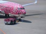 poppoya-makochanさんが、那覇空港で撮影した日本トランスオーシャン航空 737-8Q3の航空フォト(写真)
