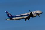 YZR_303さんが、中部国際空港で撮影した全日空 A320-271Nの航空フォト(写真)