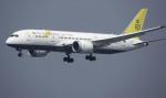 planetさんが、香港国際空港で撮影したロイヤルブルネイ航空 787-8 Dreamlinerの航空フォト(写真)