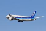 おっしーさんが、羽田空港で撮影した全日空 787-8 Dreamlinerの航空フォト(写真)
