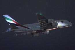 sepia2016さんが、成田国際空港で撮影したエミレーツ航空 A380-861の航空フォト(写真)