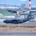 ザキヤマさんが、名古屋飛行場で撮影した航空自衛隊 C-130H Herculesの航空フォト(写真)