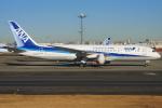 T.sさんが、羽田空港で撮影した全日空 787-8 Dreamlinerの航空フォト(写真)