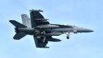 ららぞうさんが、嘉手納飛行場で撮影したアメリカ海軍 EA-18G Growlerの航空フォト(写真)