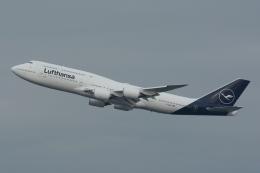 mikizouさんが、羽田空港で撮影したルフトハンザドイツ航空 747-830の航空フォト(写真)