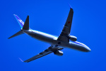 takamaruさんが、静岡空港で撮影した全日空 737-881の航空フォト(写真)