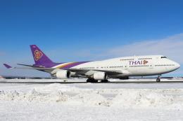セブンさんが、新千歳空港で撮影したタイ国際航空 747-4D7の航空フォト(写真)