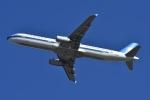 よしポンさんが、成田国際空港で撮影した中国南方航空 A321-231の航空フォト(写真)