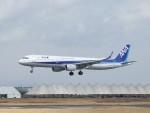 こじこじさんが、佐賀空港で撮影した全日空 A321-211の航空フォト(写真)
