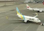 まひろさんが、中部国際空港で撮影したAIR DO 737-781の航空フォト(写真)