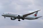 こだしさんが、成田国際空港で撮影したエア・カナダ 787-9の航空フォト(写真)