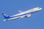 mameshibaさんが、羽田空港で撮影した全日空 A320-211の航空フォト(写真)