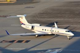 トロピカルさんが、羽田空港で撮影したPrivate G500/G550 (G-V)の航空フォト(写真)
