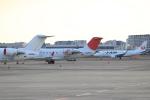 キイロイトリさんが、伊丹空港で撮影したジェイ・エア CL-600-2B19 Regional Jet CRJ-200ERの航空フォト(飛行機 写真・画像)