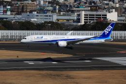 JA946さんが、伊丹空港で撮影した全日空 787-9の航空フォト(写真)