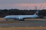Mochi7D2さんが、成田国際空港で撮影したエア・カナダ 787-9の航空フォト(写真)