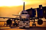 takamaruさんが、中部国際空港で撮影した吉祥航空 A320-214の航空フォト(写真)