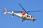 Soraya_Projectさんが、東京ヘリポートで撮影した朝日航洋 430の航空フォト(写真)