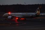 Cスマイルさんが、成田国際空港で撮影したエティハド航空 787-9の航空フォト(写真)