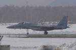 yabyanさんが、千歳基地で撮影した航空自衛隊 F-15J Eagleの航空フォト(写真)