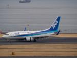 名無しの権兵衛さんが、羽田空港で撮影した全日空 737-781の航空フォト(写真)