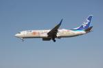 暇神さんが、成田国際空港で撮影した全日空 737-881の航空フォト(写真)