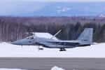 yabyanさんが、千歳基地で撮影した航空自衛隊 F-15J Eagleの航空フォト(飛行機 写真・画像)