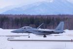 yabyanさんが、千歳基地で撮影した航空自衛隊 F-15DJ Eagleの航空フォト(飛行機 写真・画像)