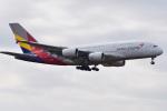 Cスマイルさんが、成田国際空港で撮影したアシアナ航空 A380-841の航空フォト(写真)