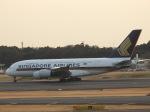 kayさんが、成田国際空港で撮影したシンガポール航空 A380-841の航空フォト(写真)
