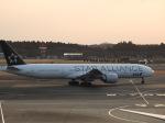 kayさんが、成田国際空港で撮影した全日空 777-381/ERの航空フォト(写真)