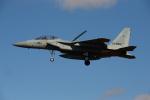 みや~れさんが、岐阜基地で撮影した航空自衛隊 F-15DJ Eagleの航空フォト(写真)