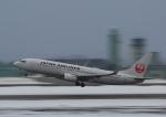 タミーさんが、小松空港で撮影した日本航空 737-846の航空フォト(写真)