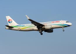 goldengoldsさんが、成田国際空港で撮影した中国東方航空 A320-214の航空フォト(写真)